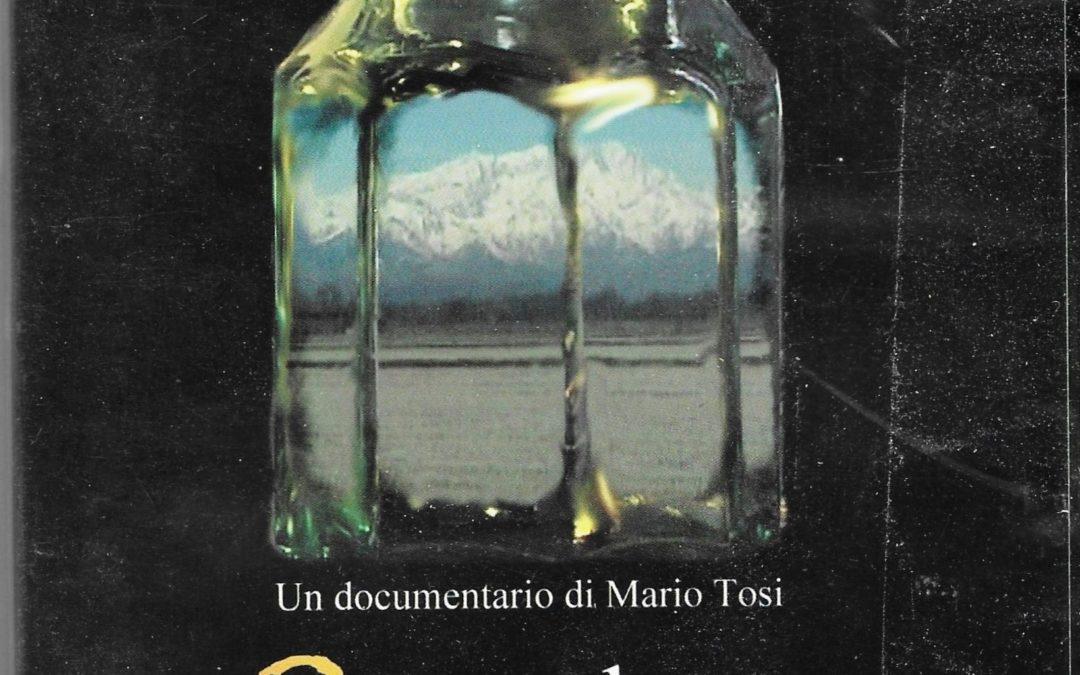 """Cercando Zardino, documentario-intervista sulla """"Chimera"""" di Vassalli"""